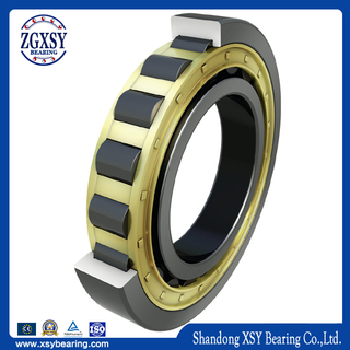 Manufactory Zz, 2RS, Rz, Nr, N Inner Ring Single Row Cylindrical Roller Bearing