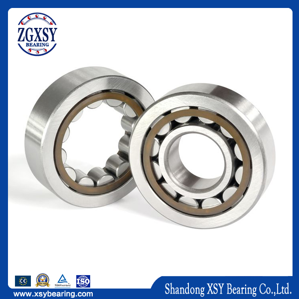 Zgxsy China Cylindrical Roller Bearing Nj209 Nj210 Nj211 Nj212m
